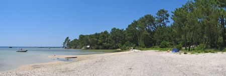 steely: Sanguinet lake with big pines along the beach and some boat on the water - The Landes - South west France - Panorama.