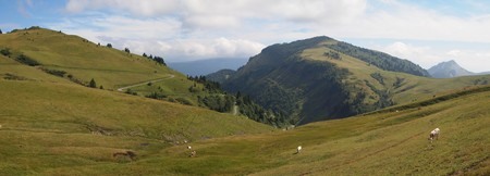 French mountains with green grass and cows from the Aravis pass - France - The Alps - Panorama.