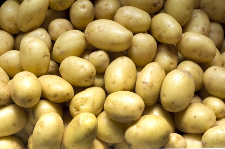 potato group
