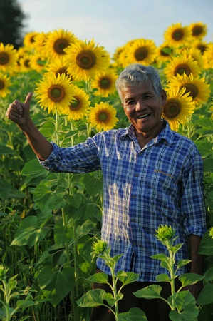 man: Man in Sunflower field