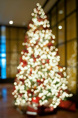 bright: Chrismast tree blurry.