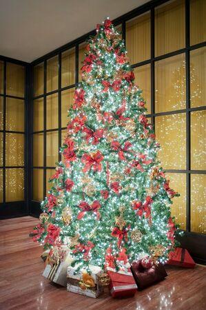 bright: Chrismast tree.