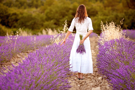 lavender fields: Beautiful young woman, holding lavender in a field on sunset Stock Photo