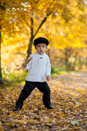 Boy in a park, playing with leaves photo
