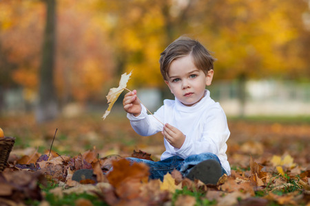 Cute little boy with basket of fruits in the park photo