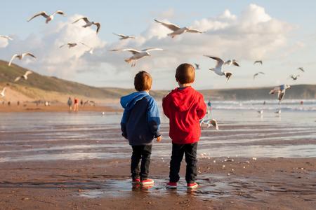 Twee schattige kinderen, het voeden van de meeuwen op het strand, zonsondergang tijd Stockfoto