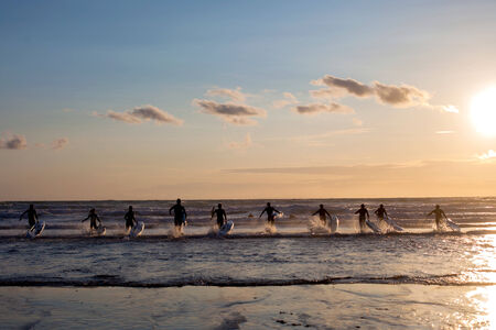 wind surfing: Group of young surfers on the beach, surfin on sunset  Stock Photo