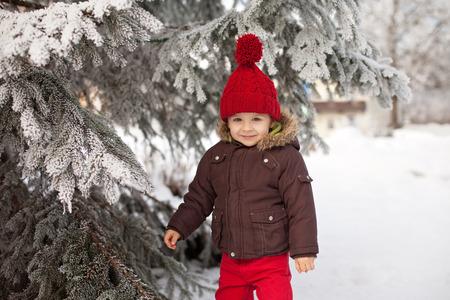 Ritratto di bambino in giacca marrone e cappello rosso e pantaloni a maglia rosso, un sacco di neve. Foresta di inverno Archivio Fotografico - 32465008