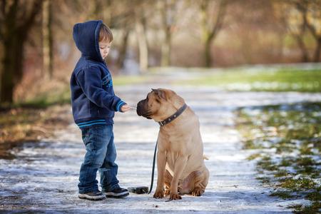 niños caminando: Niño pequeño con su perro en el parque, darle de comer Foto de archivo