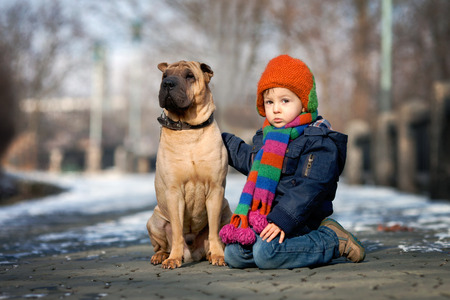 Little boy in the park with his dog friends photo
