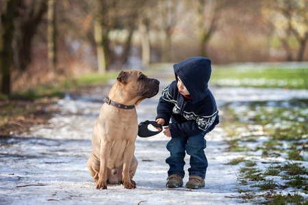 彼にキスを与えるかわいい犬と少年