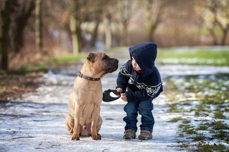 그에게 키스를주고 귀여운 강아지와 소년,
