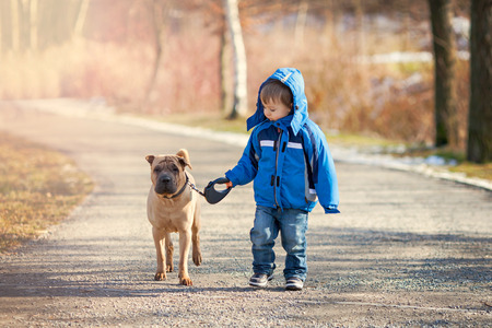 Little boy with his dog in the park, walking and smiling Stock Photo