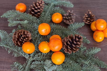 pinetree: Mandarine with a green pine tree and strobiles