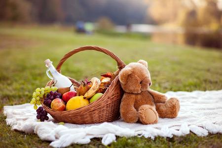 oso de peluche: Cesta para la comida campestre