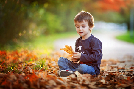 Adorable petit gar�on avec les feuilles d'automne dans le parc de la beaut�, assis sur le sol Banque d'images - 32498521