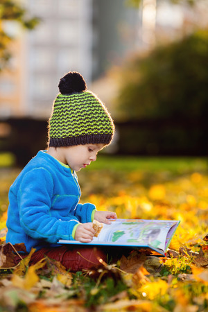 child reading book: Cute boy, reading a book on a lawn in the afternoon, faving fun, autumn sunset time