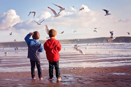 Two adorable kids, feeding the seagulls on the beach, sunset time Standard-Bild