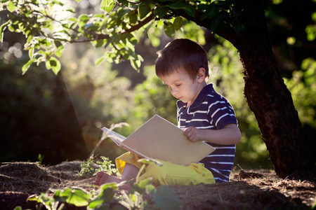 Beautiful kid boy, reading a book in garden, sitting next to a tree, gorgeous sunset light