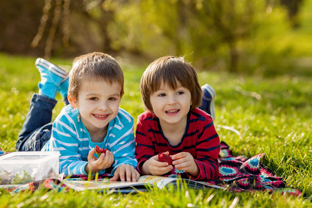 two boys: Two adorable cute caucasian boys, lying in the park in a fine sunny afternoon, reading a book and eating strawberries, educating themselves and having fun Stock Photo