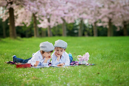 Beautiful portrait of two adorable caucasian boys, reading a book in a cherry tree blooming garden, spring afternoon, kids lying on the grass on a blanket, vase with flowers and guitar next to them