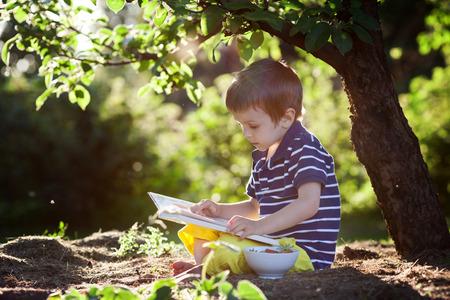 아름다운 아이 소년, 나무 옆에 앉아 정원에서 책을 읽고, 화려한 석양 빛 스톡 콘텐츠