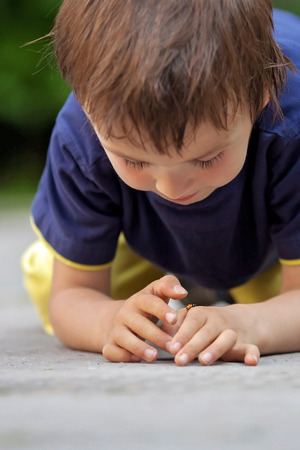 Cute little toddler boy, playing with ladybird outdoor in the park, summertime photo