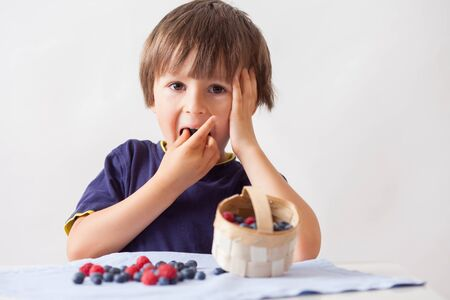 girotondo bambini: Bambino, seduto dietro un tavolo con lamponi e mirtilli, mangiare loro e giocare con loro, isolato su bianco