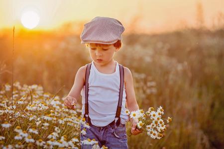campo de flores: Ni�o peque�o hermoso en campo de la margarita en la puesta del sol, el verano Foto de archivo