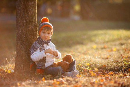 colorful maple trees: Adorable little boy with teddy bear in the park on an autumn day in the afternoon, sitting on the grass Stock Photo