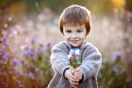 beautiful little boys: Sweet little boy, holding flowers on sunset, autumn day, back lit