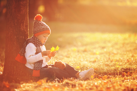 Adorable little boy with teddy bear in the park on an autumn day in the afternoon, sitting on the grass Foto de archivo