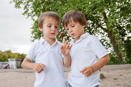 Cute little toddler boys, brothers, playing with butterfly outdoor in the park, summertime