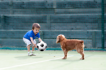 sports field: Cute little boy, playing football with his dog on the playground Stock Photo
