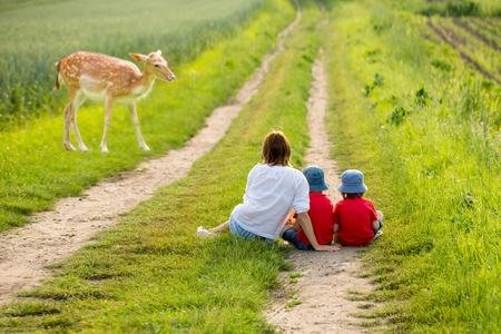 Young mother with her two children watching young foe in a spring blooming field on sunset, rural scene Stock fotó