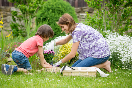 Mother and son gardening together in their little garden in the backyard, springtime
