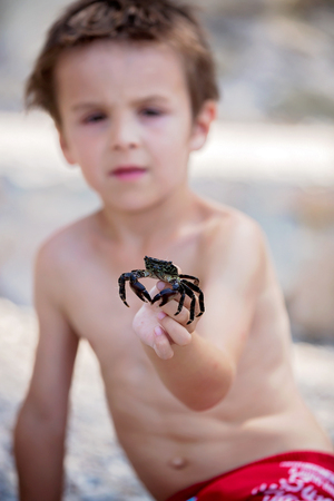 children crab: Cute boy, playing with little crab on the beach, french riviera