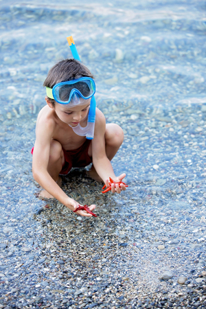 plankton: Little boy holding red five point starfish and net in his hands on the beach