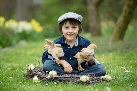 Cute little preschool child, boy, playing with easter eggs and chicks in spring blooming garden, sitting in handmade nest, easter happiness childhood concept Banco de Imagens
