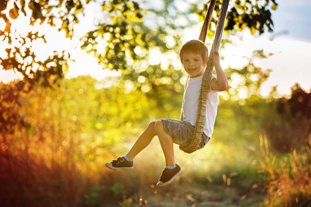 Cute child, boy, having fun on a swing in the backyard on sunset