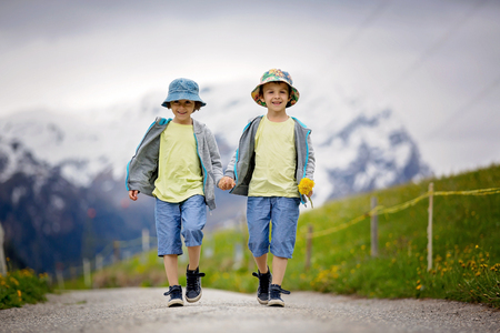dandelion snow: Two children, boy brothers, walking on a little path in Swiss Apls, hiking mountain, gathering herbs and flowers