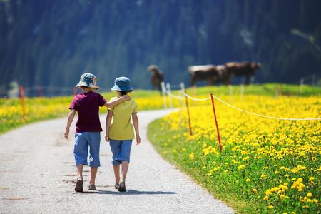Gelukkige kinderen die op een landelijke weg wandelen in de Zwitserse Alpen, de lente, koeien in het veld Stockfoto