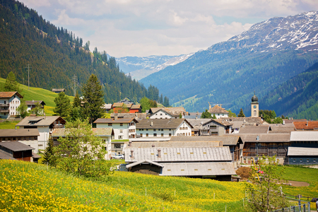 Beautiful spring landscape in Switzerland Alps with fields of dandelions, cows and rural life