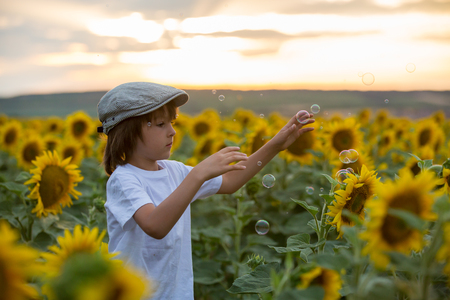 Cute child with sunflower in summer sunflower field on sunset. Kids happiness concept