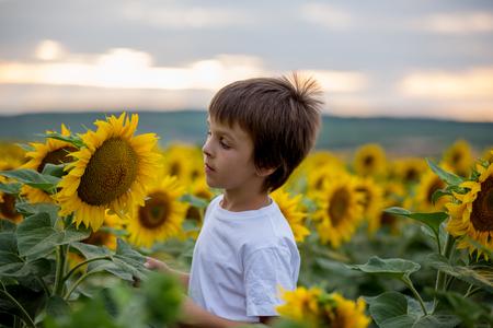 Bambino carino con girasole in campo di girasole estivo sul tramonto. Concetto di felicità dei bambini Archivio Fotografico - 81944943