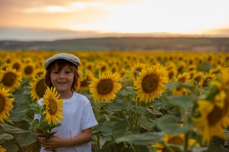 Leuk kind met zonnebloem in zomer zonnebloem veld bij zonsondergang. Kind geluk concept Stockfoto