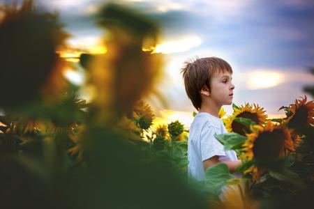 Bambino carino con girasole in campo di girasole estivo sul tramonto. Concetto di felicità dei bambini Archivio Fotografico - 82526699