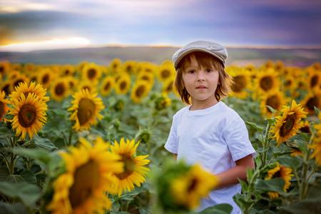 Leuk kind met zonnebloem op het gebied van de de zomerzonnebloem op zonsondergang. Kinderen geluk concept Stockfoto