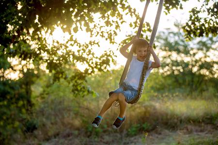 Cute child, boy, having fun on a swing in the backyard on sunset