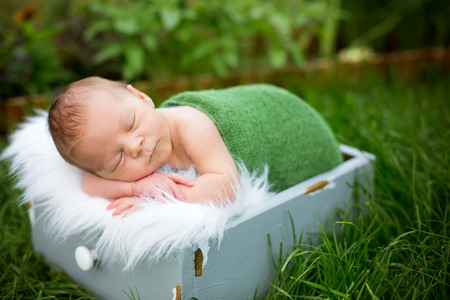 Little sweet newborn baby boy, sleeping in crate with wrap and hat, outdoors in garden Imagens